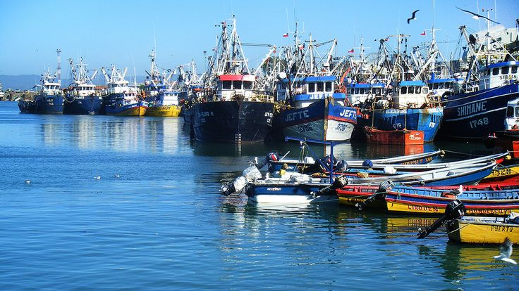 Talcahuano / Chile | Flickr - Photo Sharing!