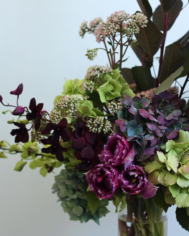 Hydrangea, fringed tulips and orchid arrangement by @dittodittoflorals