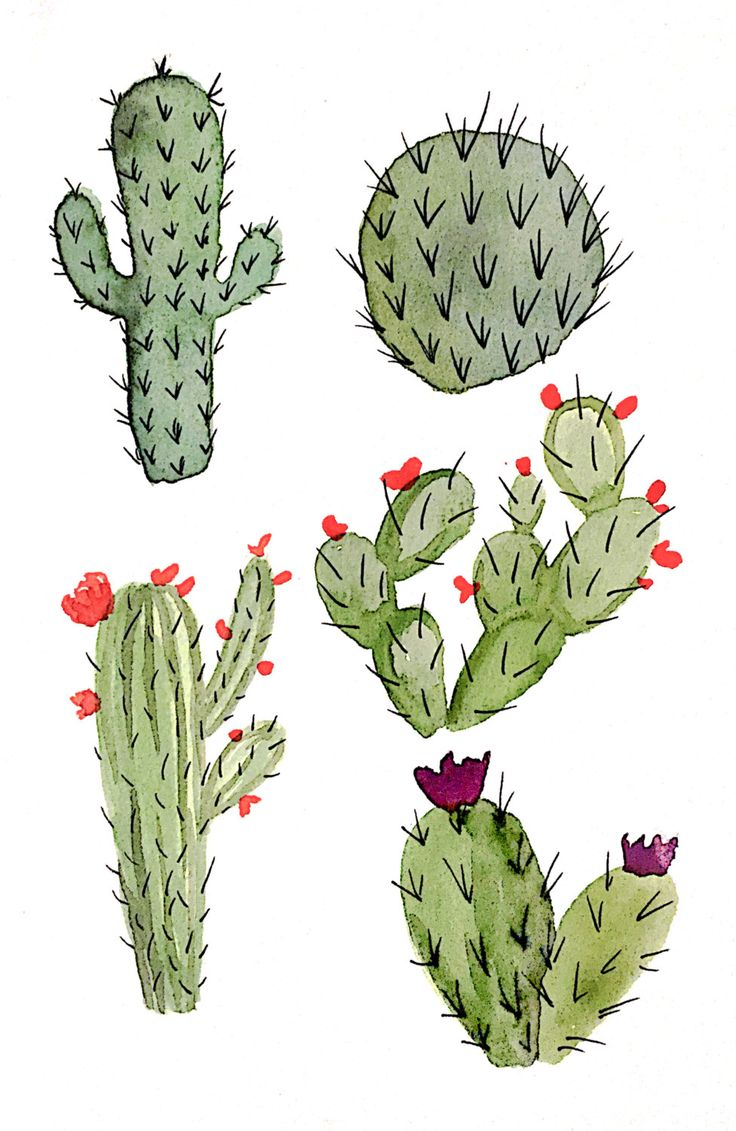 Watercolor Cacti Print by FourthAndElm on Etsy                                                                                                                                                                                 More