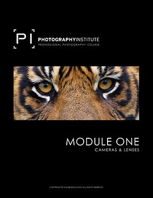 The Photography Institute - United States
