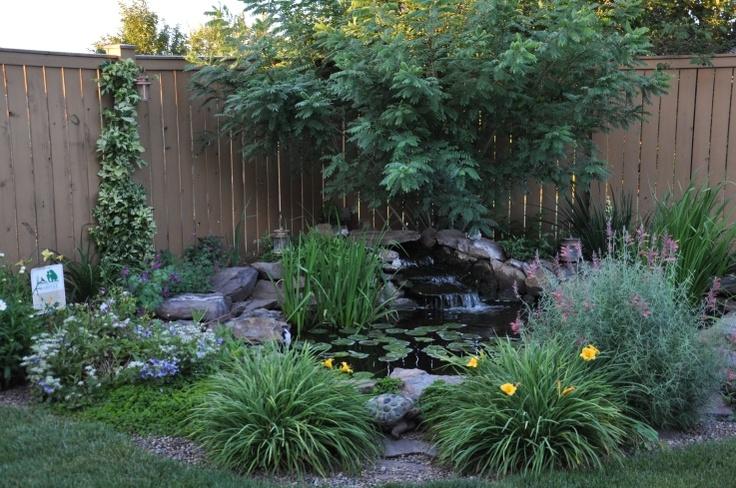 17 best images about corner pond for lincoln on pinterest for Corner fish pond