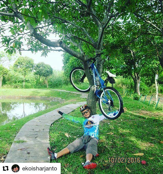 #Repost @ekoisharjanto  ini pohon apa ya? nyari bibitnya dimana? buahnya emang kek sepeda gitu yah? :D  Peluh yang menetes ketika kau mencari nafkah akan terbayar dengan nikmat dan berkah yang kau makan ... #gogreen #gowes #pedal #sepeda #cycling #bike  #mtb #offroad #fixie #bmx #fashion #bekasi #explorebekasi #dh #instapicture #like4like #pacificbikes #pacificbikerider #sepeda #sepedagunung #bersepeda #gowes #hardtail #mountainbike #mtbindonesia #crosscountry  #followforfollow #me…