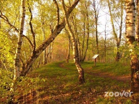 Natuurpark De Leemputten - Point of Interest  Bij Groenlo en Eibergen aan de duitse grens