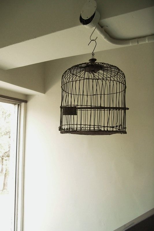 WABI-SABI [ Vintage Bird Cage ]