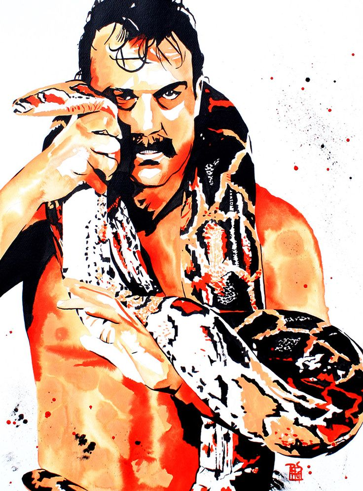 jake the snake roberts ink and liquid acrylic on 22 x 30 watercolor
