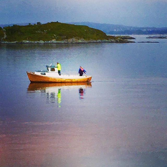 Blikkstille fiskevær#austevoll#hundvåkøy #visitnorway #vestcoastofnorway #fishing