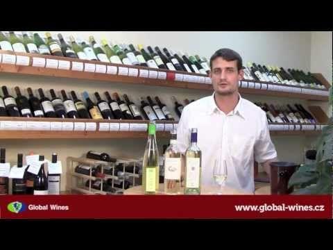 Video degustace 11: Vína pro letní dny, která vás osvěží