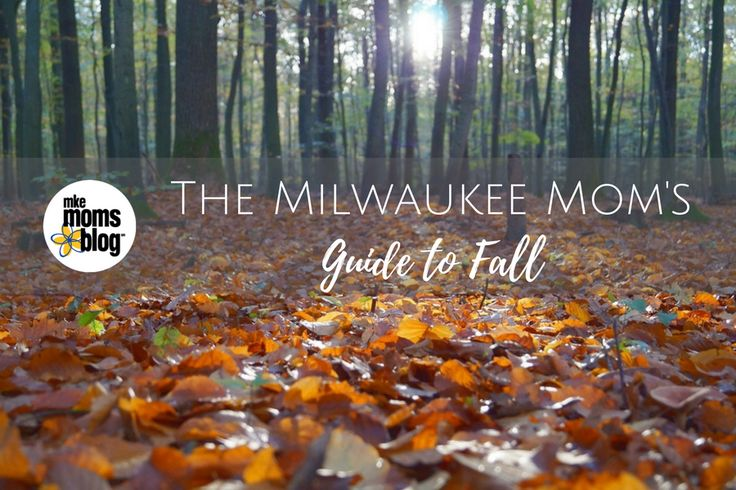 Now that Labor Day is in our rearview mirror, it is OFFICIALLY FALL!!! Where are the local pumpkin patches & apple orchards? What are the best hiking trails around Milwaukee? What about Fall Festivals? We've put together all our fall resources in one convenient post so you will want to save this and reference it often as fall is upon is!  The Milwaukee Mom's Guide to Fall http://milwaukee.citymomsblog.com/mom/the-milwaukee-moms-guide-to-fall/