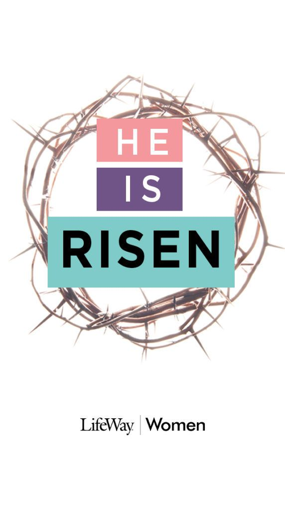 For Christmas, we prepare our homes for weeks (or even months). We decorate, we bake, and we invite others into our homes. We often don't think about doing the same for Easter. This year, we want to make sure you have everything you need to host a celebration—the celebration of our risen Savior who makes …