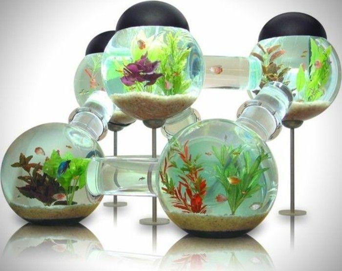 die welt der fische aquarium kugel wasserpflanzen sand kleine fische goldfische aquarium. Black Bedroom Furniture Sets. Home Design Ideas