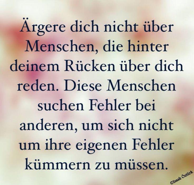 Various Der Poetische Calamander Theil 2