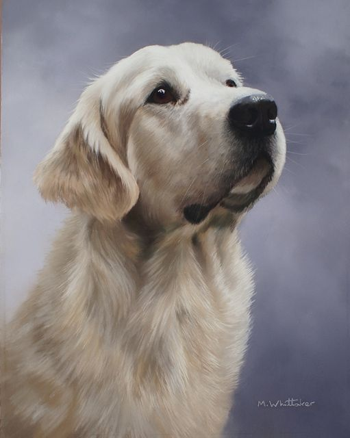 Original Pastel Painting Of Golden Retriever