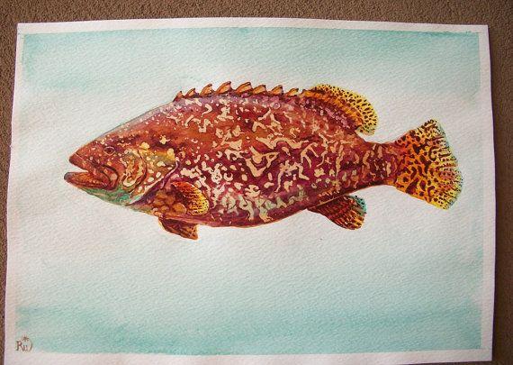 pesce cernia acquerello dipinto originale / grouper di Stellangelo
