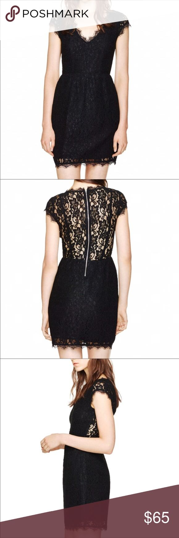 Aritzia Babaton Tobias Lace Dress - Black, 6 Waist defining and super flattering Aritzia Babaton lace dress. Made of black lace, lined and features hidden side pockets. The back is sheer as you can see in the pictures to show a little skin.  Excellent preowned condition.  Offers welcomed!  P15 Aritzia Dresses
