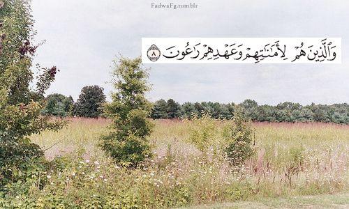 و ال ذ ين ه م ل أ م ان ات ه م و ع ه د ه م ر اع ون 8 سورة المؤمنون