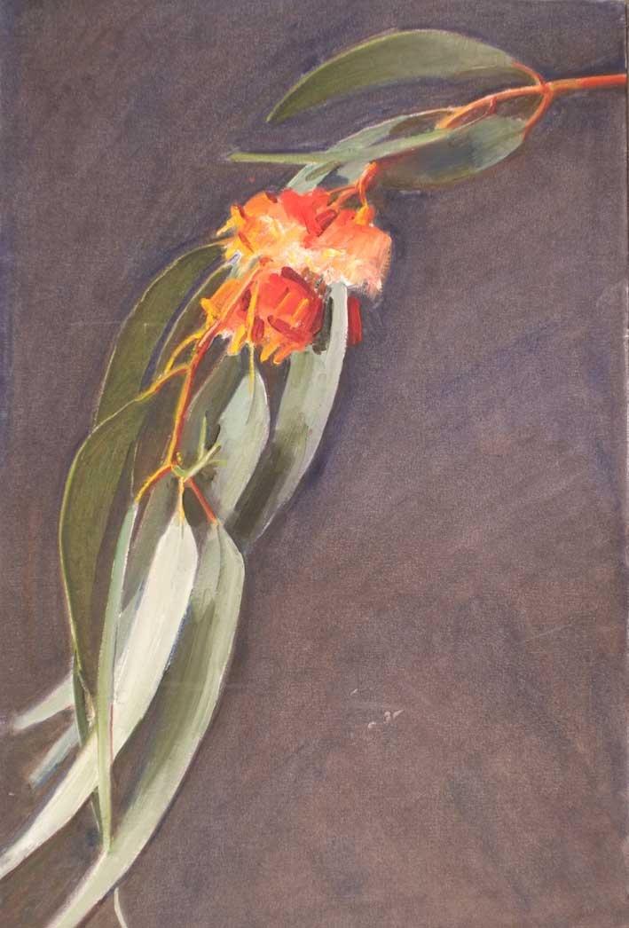 gumleaf by Robert Hannaford