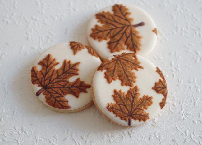 fall leaves, by doctorcookies