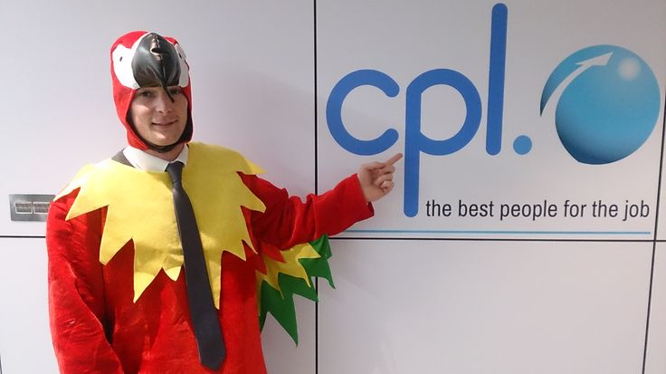 Robbie the Parrot looking bright eyed and bushy tailed as he prepares for his day at work.  #TheCplParrot