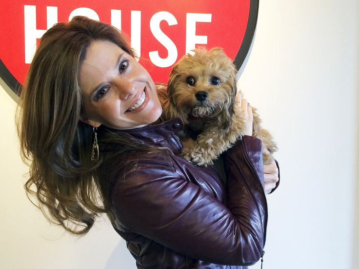 Forever young: New dog breed won't lose puppy face. A mix : The cava-poo-chon is a cavalier King Charles spaniel and bichon frise mix bred with a miniature poodle.