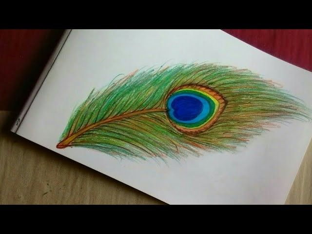 How To Draw Beautiful Peacock Feather Feather Drawing Peacock Feather Drawing Feather Painting
