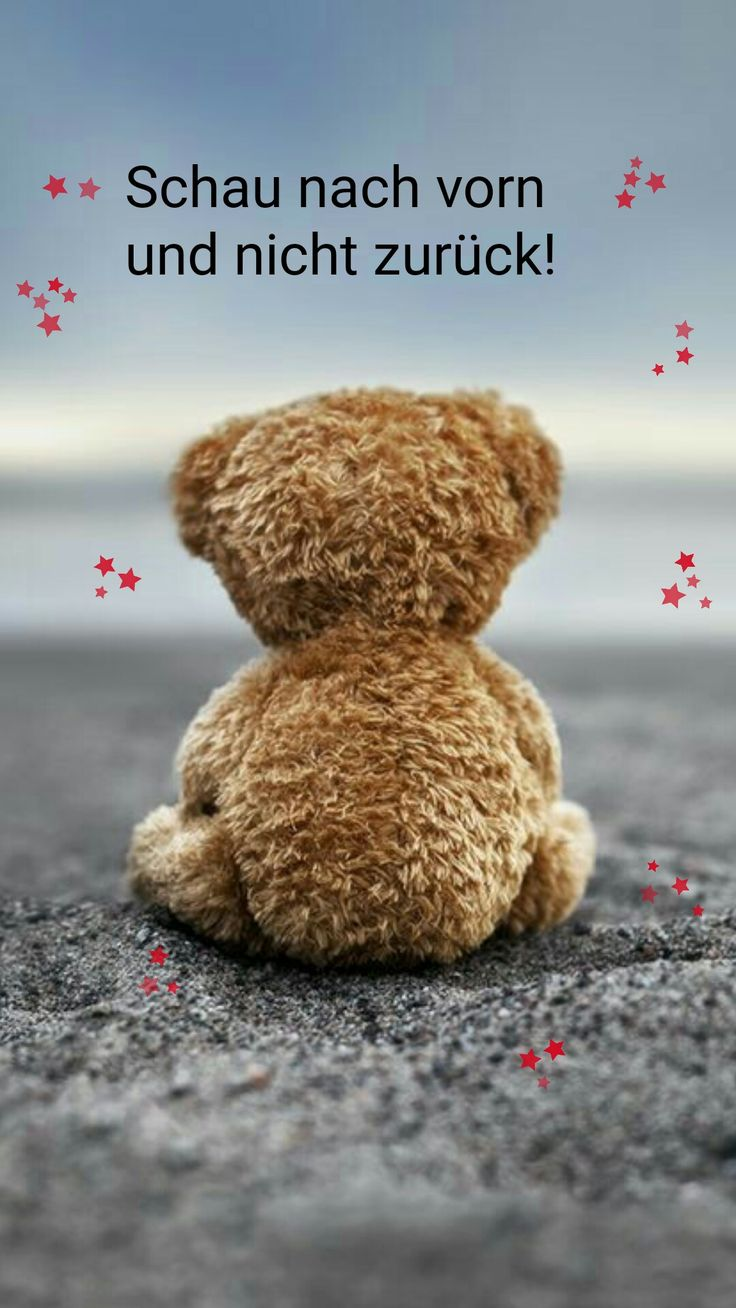 Teddy Mehr