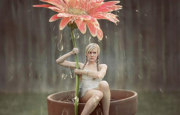 Обои картинки фото девушка, цветок, капли, душ, арт