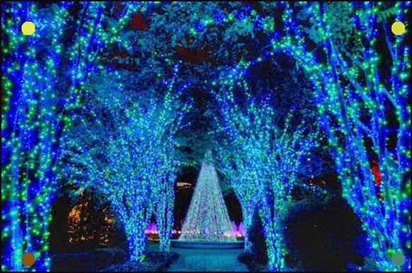 Atlanta Botanical Garden Atlanta Botanical Garden Holiday