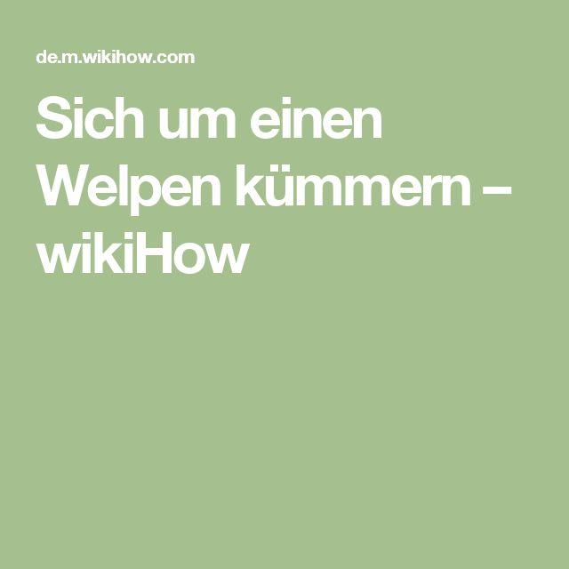 Sich um einen Welpen kümmern – wikiHow