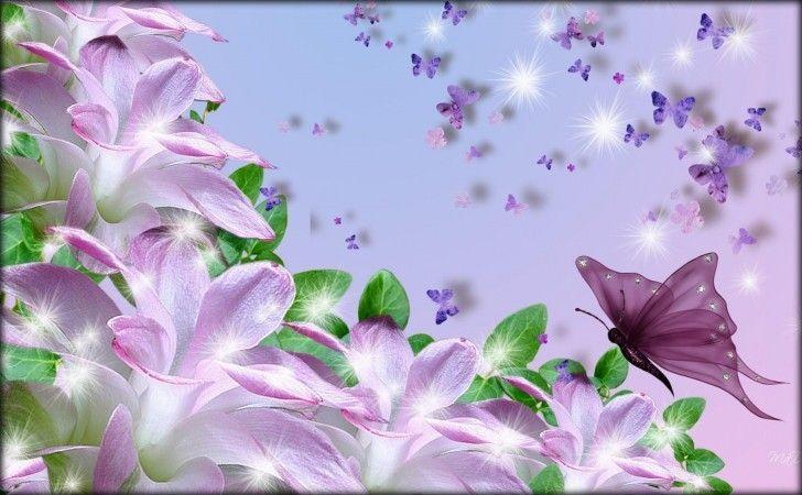 Fotos de flores muy 728 450 flores pinterest - Fotos de flores bonitas ...
