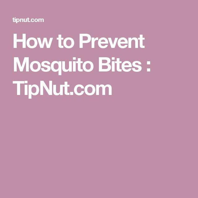 How to Prevent Mosquito Bites : TipNut.com
