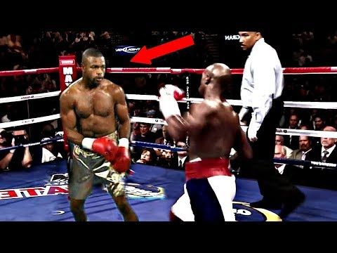 Scientific Studies Prove This Is The Best Boxer Ever!? - YouTube
