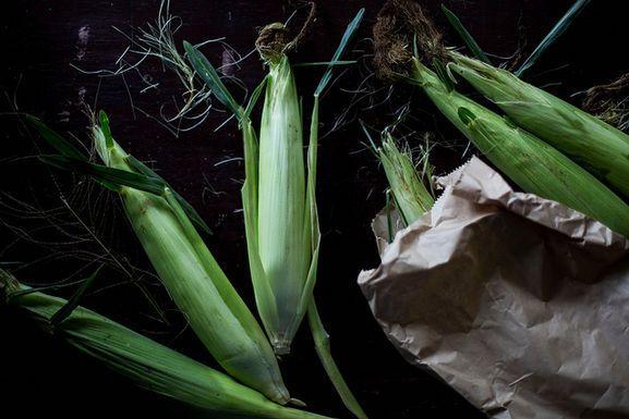 How to Choose an Ear of Corn (Without Peeking!)