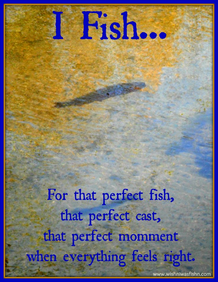 1000 images about fishing quotes on pinterest patrick o for Quotes about fish