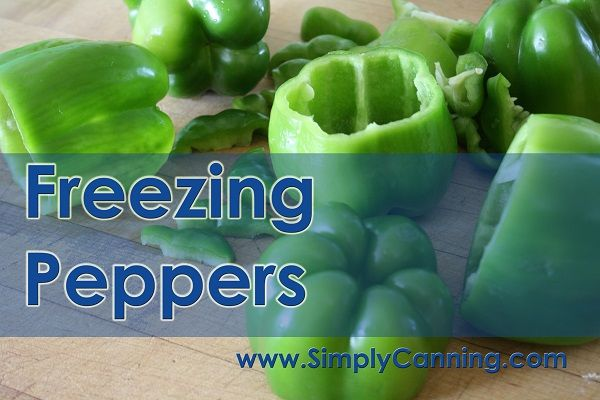Freezing Peppers is easy.  http://www.simplycanning.com/freezing-peppers.html