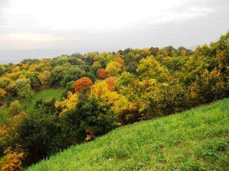 Vue depuis la colline de Buda - Hongrie