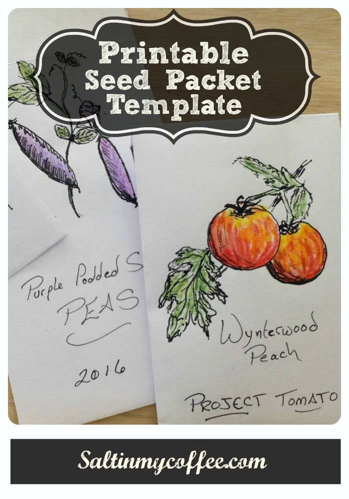An easy, printable seed packet for saving seeds!