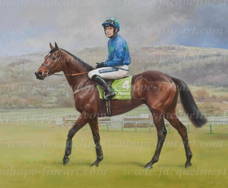 A champion racehorse with a record 22 Grade 1 wins including the Stan James  Champion Hurdle at the Cheltenham Festival, the Irish Champion Hurdle x 5,  the Morgiana Hurdle and the Rabobank Champion Hurdle at the Punchestown  Festival. Trained by Willie Mullins in Co. Carlow, Ireland and ridden h