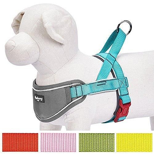 """Blueberry Pet 5 Colors Soft & Comfy 3M Reflective Strips Padded Dog Harness Vest Chest Girth 24.5"""" - 29.5"""" Large Lake Blue Large Nylon No Pull Adjustable Training Harnesses for Dogs"""
