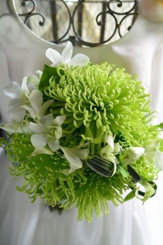 和装ブーケ bouquet for kimono 菊、デンファレ、ミスカンサス
