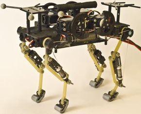 El robot-gato diseñado por investigadores franceses.   Acertada investigación en biomecánica, sobre todo en lo que se refiere a las patas, es uno de los puntos débiles en el diseño de robots morfológicamente inspirados en animales o humanos. La idea es que este tipo de robots sean usados en misiones de recate o exploraciones.