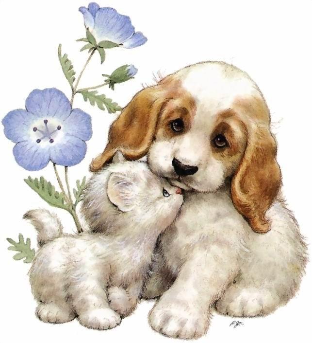 Открытки своей, картинки кошка и собака для детей