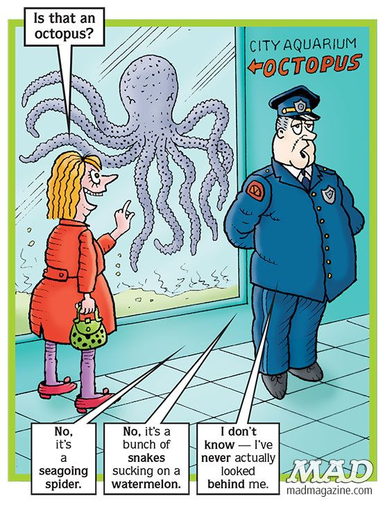 107 best images about Mad Magazine on Pinterest | My ebay ... Octopus Questions And Answers
