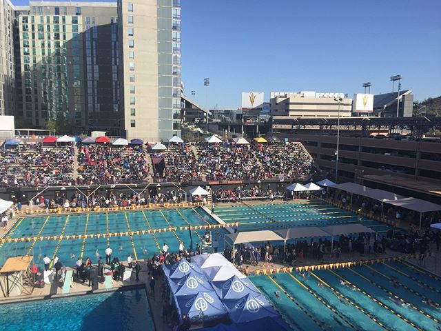 Swim Neptune S Village Swimmers From Ocotillo And Dc Ranch Just Participated In The Swim Neptune Hosted Holiday Festival At Asu One Swimmer Swimming Swim Meet