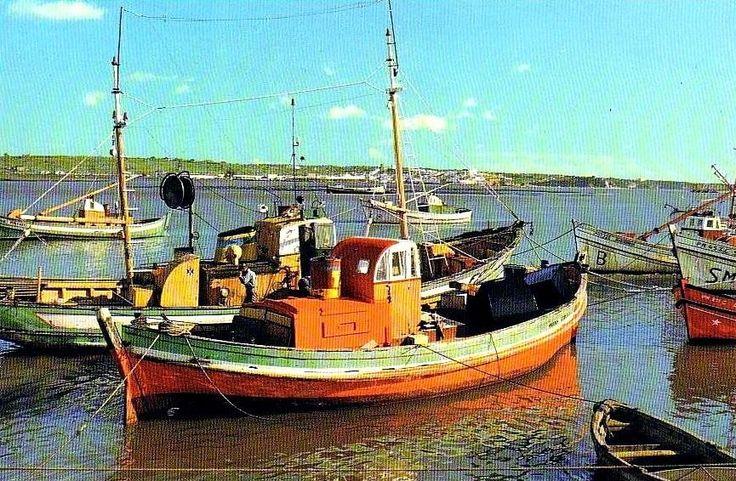 Várias embarcações nos anos 60 na foz do Arade, Portimão, todas elas já a motor, mas onde é possível  ver em primeiro plano uma das de transição, com casco em ogiva e consequente cadaste na ré, onde de montava o leme de cana. Relíquias da construção naval Portuguesa.