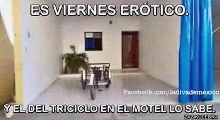 ♯☻♯ Pásala bien con memes de miss universo, humor para sordos, memes of the day, chistes malos graficos y memes chistes. ➦➦➦ www.diverint.com/...