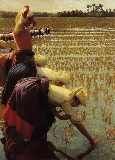 In the Rice Fields - Angelo Morbelli