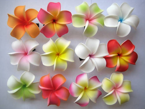 Set of 12 ~Hawaiian Hawaii Bridal Wedding Party Plumeria Foam Flower Hair Clips - favors? $27.99