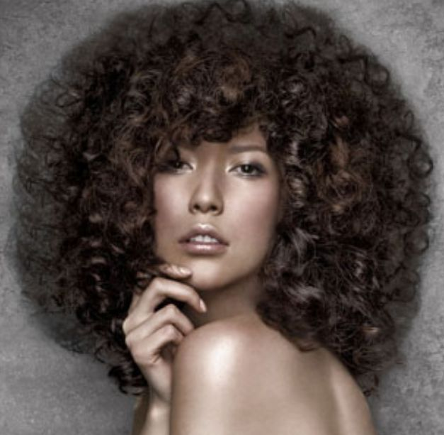 Big Hairstyles 69 Best Big Curly Hair Images On Pinterest  African Hairstyles