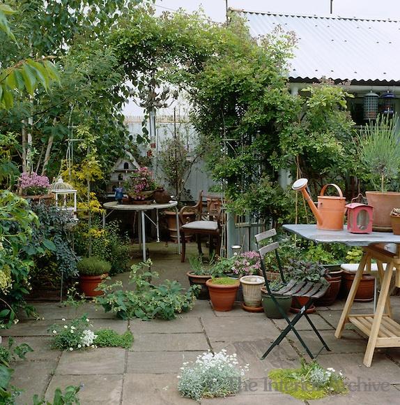 Modern Landscape Plan Style Plants Courtyard Design: 35 Best Images About Courtyard Garden On Pinterest