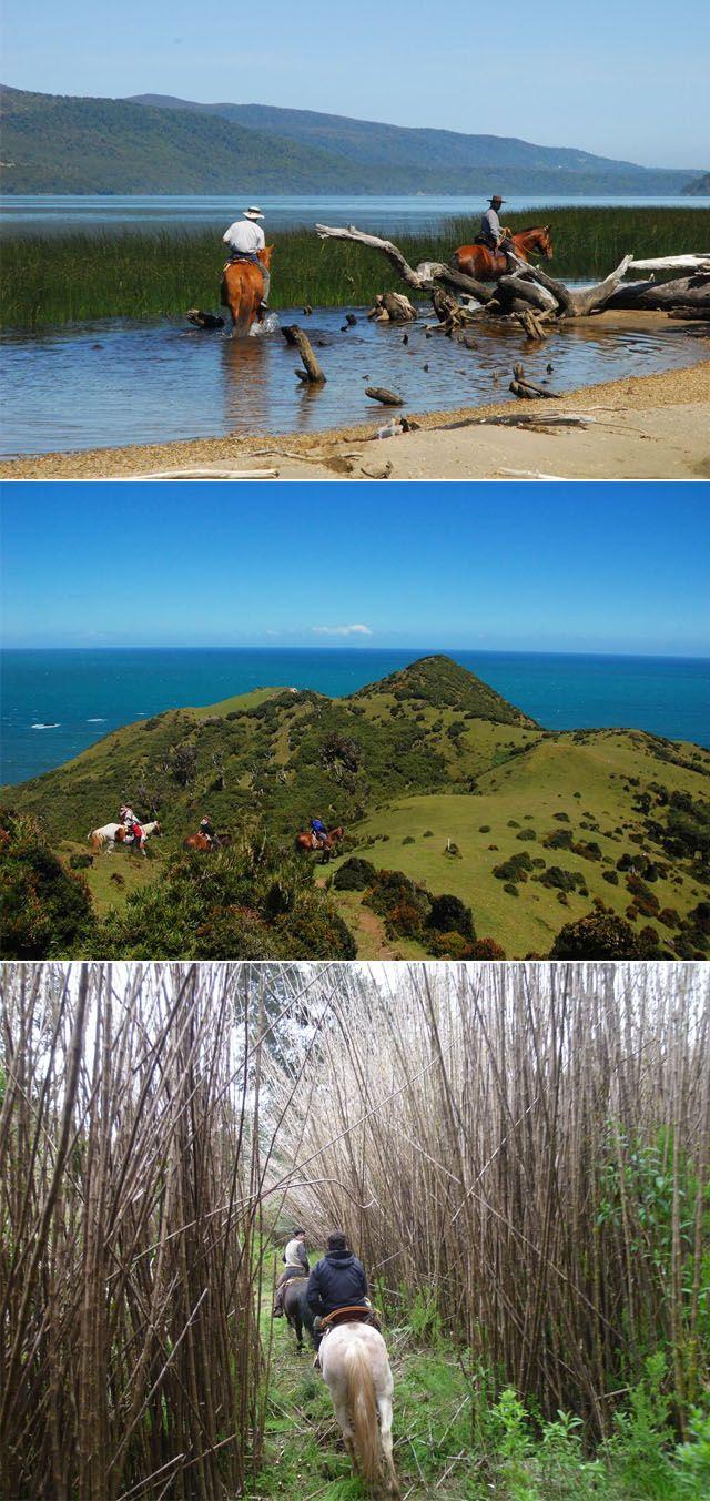 chiloe, hotel tierra, chile, viagens, aventura, gastronomia, dicas, leblog, frio, inverno, lugares para visitar